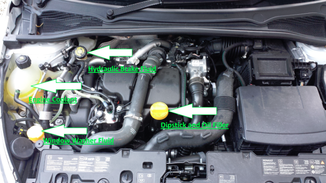 how to properly put coolant in your car